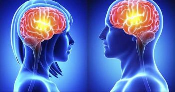 Hack Your Brain's Secret 3D Blocks to get to Twin Flame Harmony